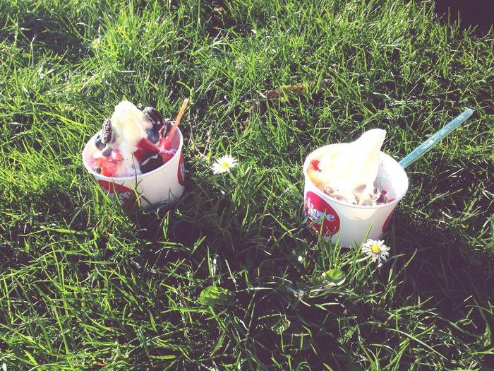 Spring Frozenyogurt Sun Green
