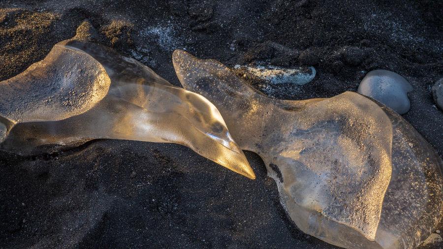Glaciers Melt Ice Iceland Jökulsárlón Reflection Beach Black Sand Black Sand Beach Close Up Glacier Glaciers Jökulsárlón Glaciar Lagoon Sunset The Photojournalist - 2018 EyeEm Awards