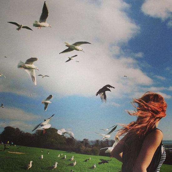 She's free PortsdownhillSeagulls redhair