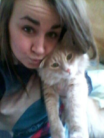 Hi! Cat Relaxing Home Sweet Home My Face Nice Day
