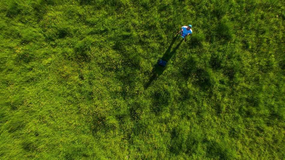 vertical view by drone in new zealand shooting green grass Drone  Aboutpassion Activity Aerialphotography Beauty In Nature Day Field Foliage Forest Golf Grass Green Color Growth High Angle View Land Leisure Activity Nature No People Outdoors Plant Sunlight Tree Vanlife