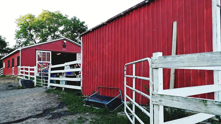 Photojournalist Built Structure Architecture Building Exterior Red Barn Close-up The Great Outdoors - 2017 EyeEm Awards The Portraitist - 2017 EyeEm Awards Blackberry Castle Photography The Photojournalist - 2017 EyeEm Awards Multi-media Journalist Reggie Banks Sr The Street Photographer - 2017 EyeEm Awards Multi Media Journalist Equine Horse Meadow Sillouette Grass Field Outdoors Agriculture Place Of Heart The Architect - 2017 EyeEm Awards Multi Colored Low Angle View Owl Hollow Farm nonprofit rescued equines