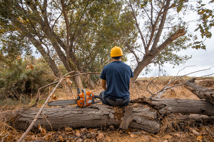 Rear view of man sitting on tree trunk with chainsaw in forest