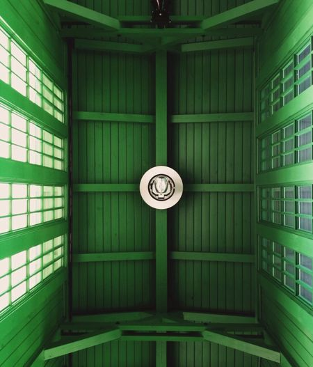 Look Up And Thrive Mint By Motorola IPSGreen
