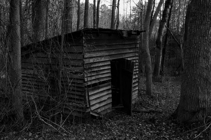 It's what's inside that counts . Dark Fairytale Visual Poem Black & White B&w Photography Abandoned Buildings Abandoned Twisted Dream Light And Shadow Dark Woods EyeEm_abandonment