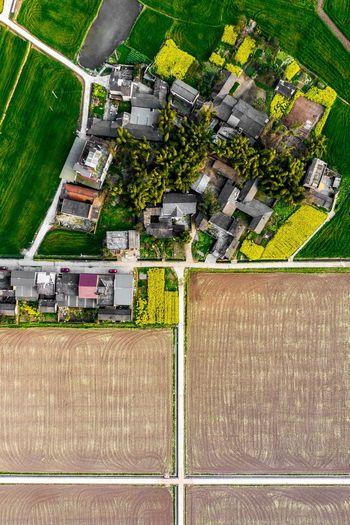 Aerial view of agricultural field by buildings in city