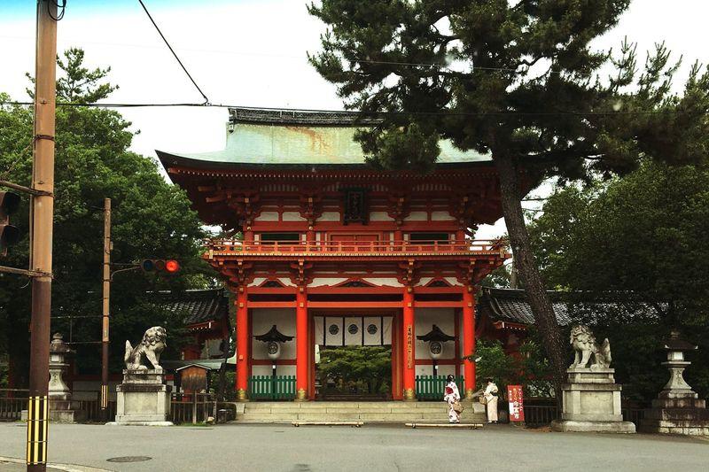 @ Kyoto @ Shrine @ 京都 @ 今宮神社
