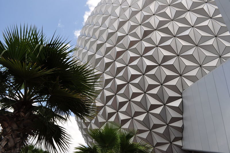 Been There. Architecture Built Structure Close-up Day Epcot Indoors  Low Angle View Modern No People Palm Tree Pattern Sky Tree