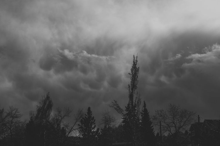 Wind Stormclouds Storm Ominous Ominous Sky Black And White Weather Bad Wind