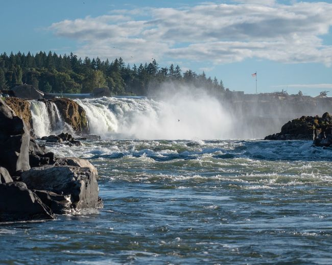 The Falls American Flag Water Nature Photography Outdoors River Outdoor Photography Waterfalls Water Motion Beauty In Nature Tree Nature Splashing Scenics - Nature Outdoors Power No People Cloud - Sky Flowing Plant Waterfront Power In Nature Flowing Water Spraying Sky Day