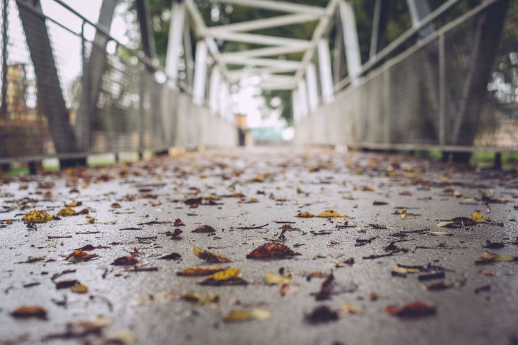 Surface level of footbridge with fallen leaves