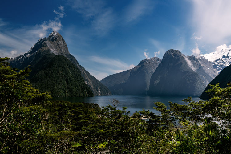 EyeEm Nature Lover EyeEm New Here Fiordland Milford Sound Mitre Peak National Park Native Bush Nature Ocean Stunning View Water