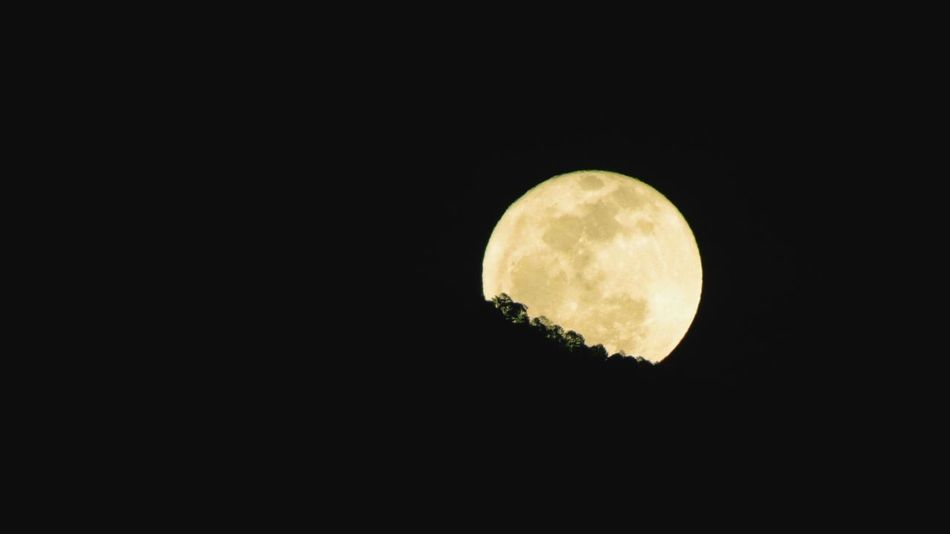 Wish I had a better camara to capt this moment even more precisely, but it was a yellow moon coming out from behind a mountain Yellowmoon Unusual Stunning Moon Night View Sky Horizon Full Moon