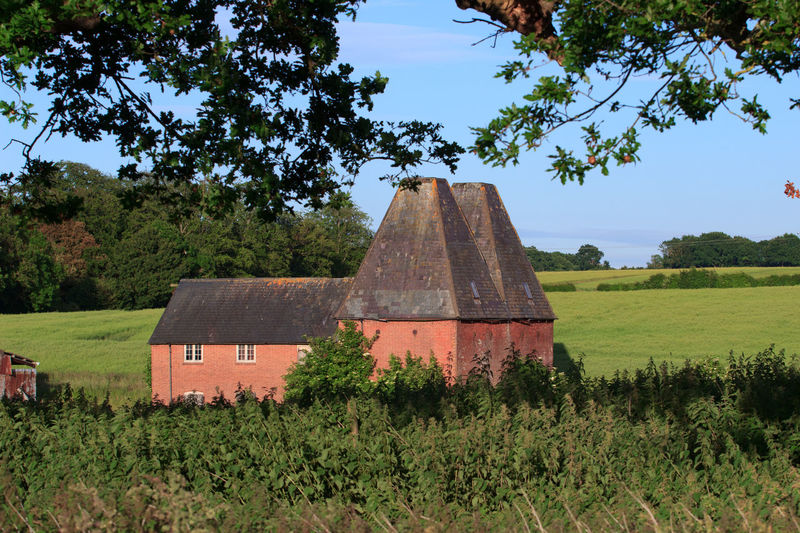 Oast House, Garden Of England , Kent, England. No People Day Architecture Vivid International Hops Beer Drying Process Rural Scene Countryside Travel Destinations Tourism Getty Images EyeEm Gallery Tree Plant Sky Field Land Nature Green Color Growth Built Structure Landscape Building Exterior Grass Beauty In Nature Environment Tranquil Scene Building Tranquility Outdoors