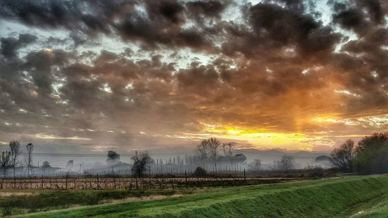 Sunset Photography Colorful Galaxys6 Nature Photography Sbphoto First Eyeem Photo Italy Tuscany Montecatini Terme
