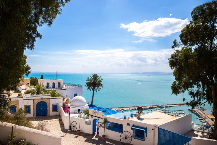 Beautiful Sidi Bou Said. Great travel destination. Tree Palm Tree Sea Water Transportation High Angle View Sky Mode Of Transport Vacations Tourism Blue Travel Destinations Ocean Tropical Climate Tranquility Day Nature Scenics TakeoverContrast Architecture Sidi Bou Said Tunisia Multi Colored Magic Freshness