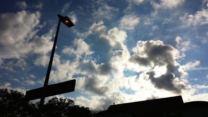 Licht. Gegen Licht. Gegenlicht. Gegenlicht Contrast Sommer