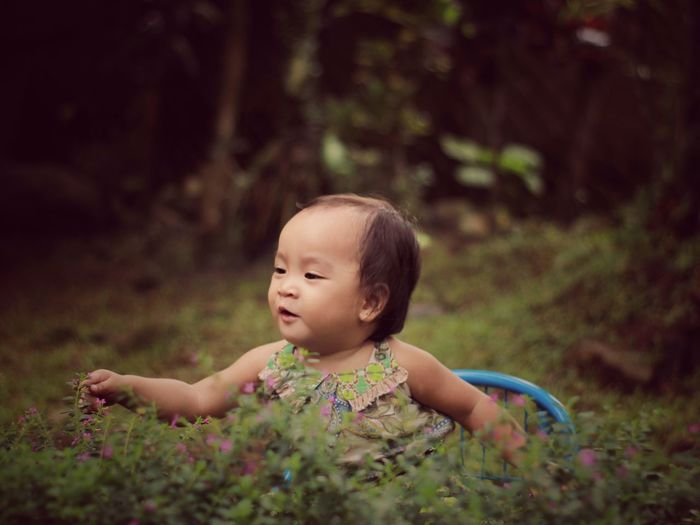 Cute baby girl playing amidst plants at public park