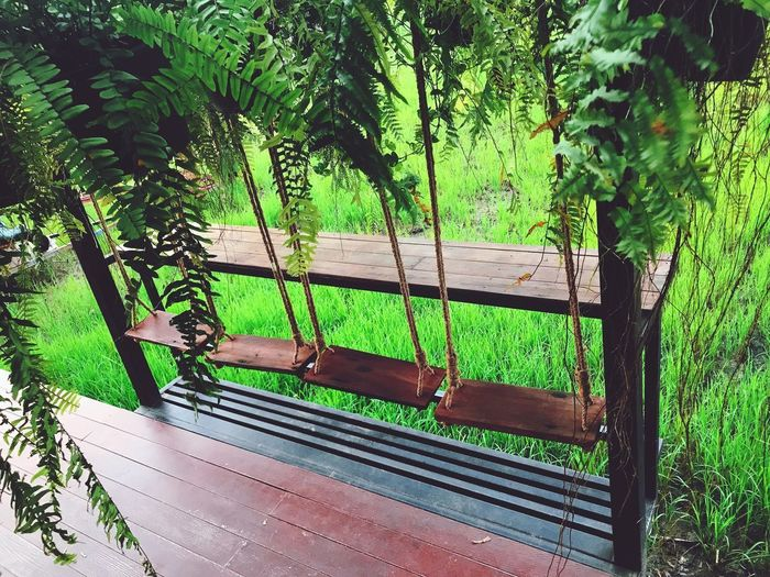 Wood Barrier Swing Plant Green Color Tree Growth Day No People Nature Park Outdoors Fence Barrier Seat Green Architecture