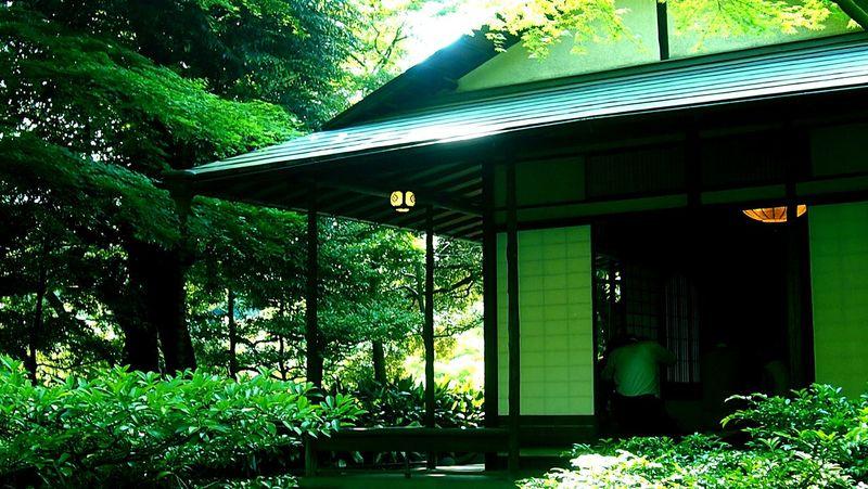 抹茶いただきました Enjoying Life Relaxing 茶室 抹茶 Japan Japanese Garden Japanese Style Japanese Tea