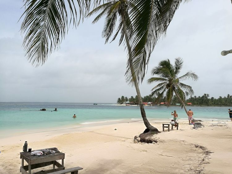 paraíso de mi tierra Tree Water Sea Beach Sand Palm Tree Summer Relaxation Blue Full Length Tropical Climate Caribbean Sea