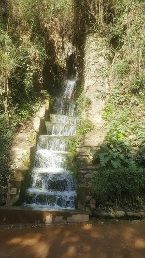 Day Water Nature No People Alhambra Alhambra De Granada  Nature Beauty In Nature Nature Photography