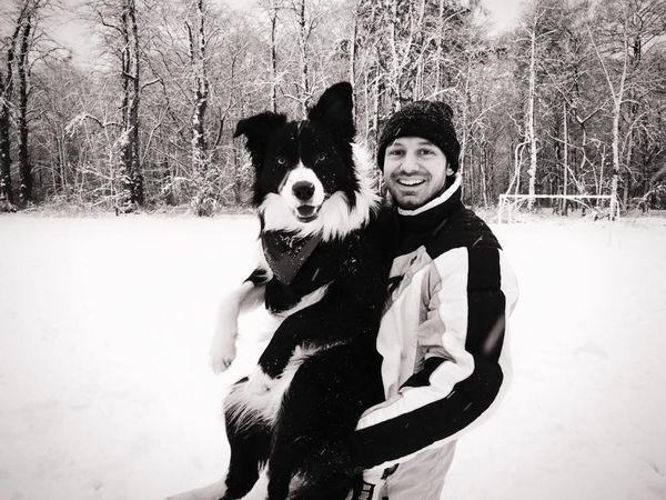 Border Collie Tilburg Royvanderwens Puppy Dog Dutch Snow Happy Blackandwhite I Love My Dog