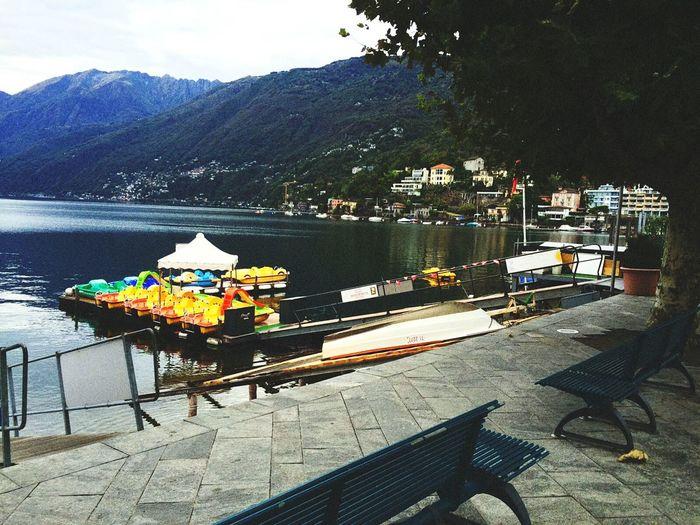 Lake Switzerland Nature Photography Nature Lover 🗻 :)