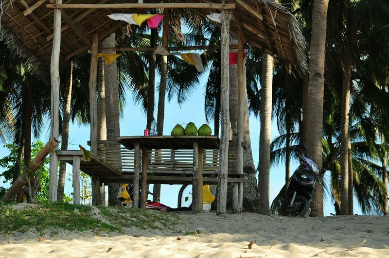 Coconutwater Coconuts Relaxing Time