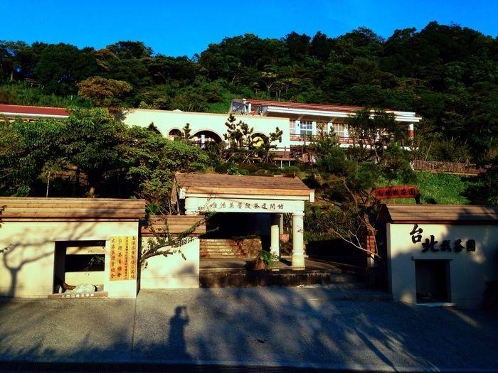 Tea Sunset Blue Sky Mountains 可以看夕陽、喝茶和呼吸新鮮空氣的地方。