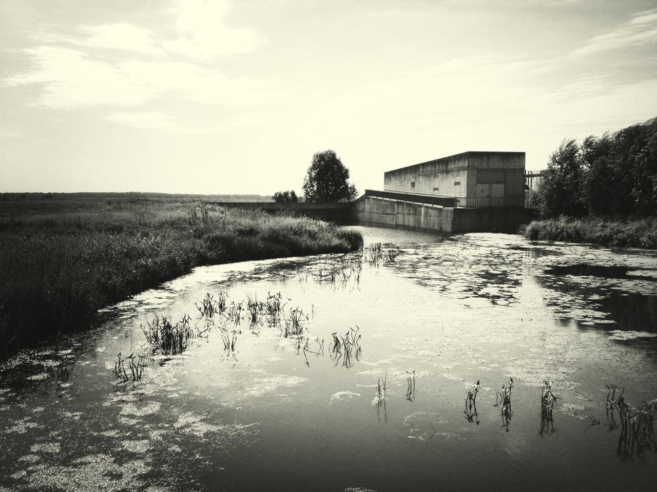Pond by field against sky