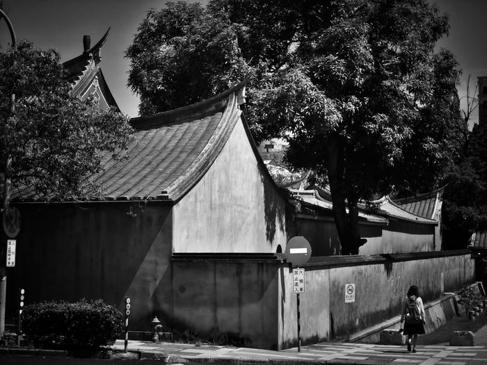 2017/6/26 街拍獵影~孔廟一側a side at Tainan Confucius Temple 於臺南孔廟外 Taiwan Bw Bw_lover BW_photography B&w Photo B&w Bw Photography B&w Photography Bwphotography Streetphotography Street Street Photography Streetphoto_bw Streetphotography_bw Tree Built Structure Building Exterior Street Scene EyeEmNewHere