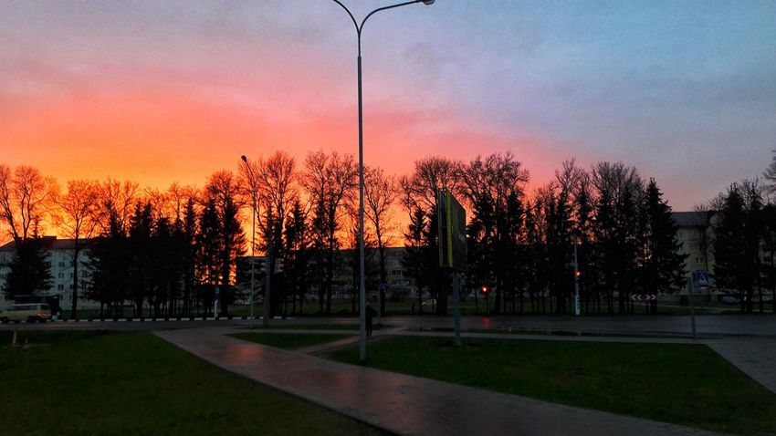 Sunset Tree Sky No People Outdoors Beauty In Nature Nature Day One Young Woman Only Children Only City People Motion Full Length One Person Childhood Leisure Activity Tree Beauty In Nature Nature Two People Child One Boy Only Adults Only Casual Clothing