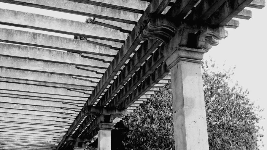 Architecture Low Angle View Arch Architectural Column Column Day Outdoors Pillar History The Past Arcade Architectural Feature Blackandwhite Black And White Monochrome Photography
