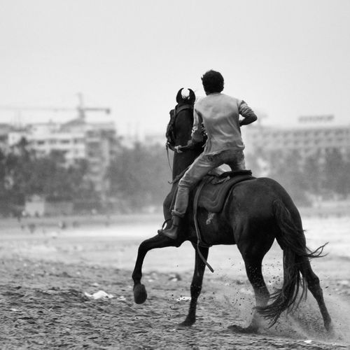 Rear view of a man riding horse on beach