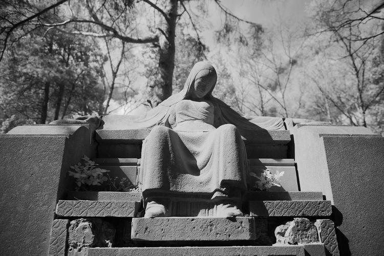 Graveyard Beauty Graveyard Jewish Grave Infrared Blackandwhite Monochrome Aachen FUJIFILM X-T1