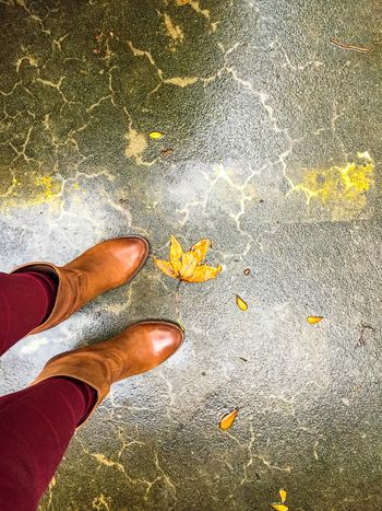 Cold, wet fall days. Life In Motion Happy Feet Exploring New Ground Share Your Adventure Traveling Feet Boots Showcase: November Fall Days How Do You See Climate Change?