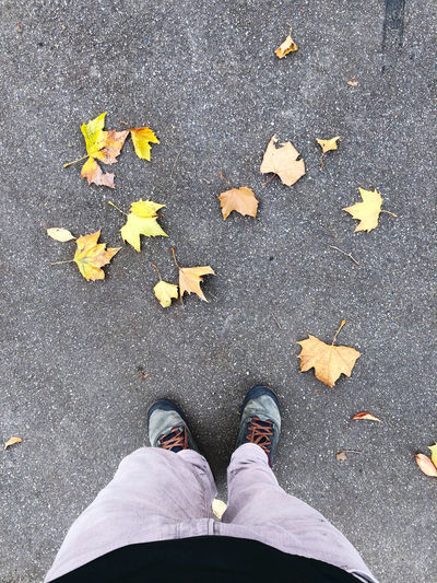 Low section of person standing on street during autumn