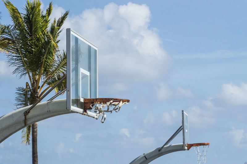 Low angle view of basketball hoop and tree against sky