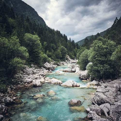 The Soca, running within the Triglav national park in Slowenia Wanderlust Beauty In Nature Cloud - Sky Day Europe Forest Landscape Mountain Mountains Nature No People Outdoors River Rock - Object Rocks Scenics Sky Slowenia Soca Tranquil Scene Tranquility Tree Triglav Water Waterfall