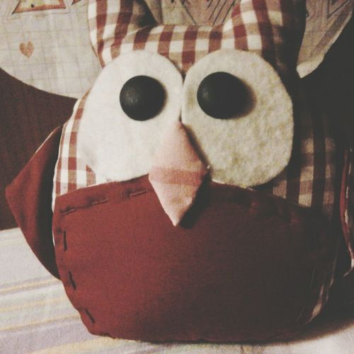 Someone is watching me. Owl Red Cute♡ Amazing