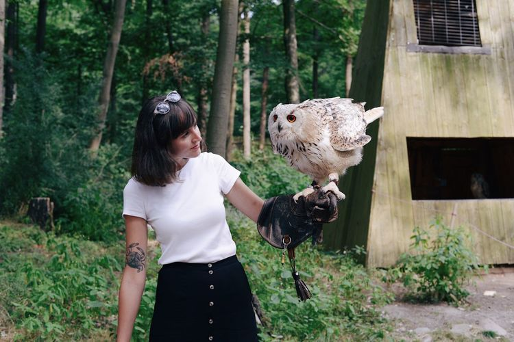 Woman Looking At Owl Perching On Her Hand In Forest