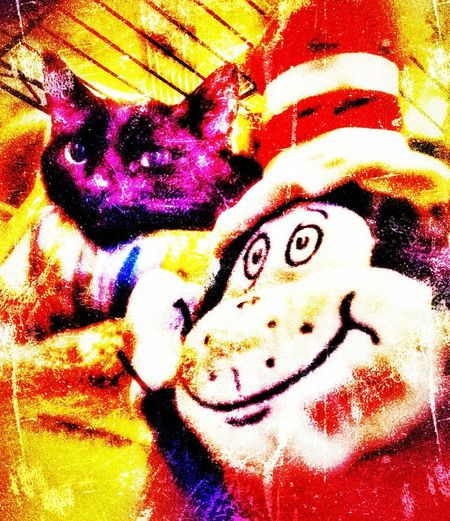 Cat on the hat with hi ying special effects collection heavy color cropped No People Full Frame Close-up Animal Themes Black Cat Watching Black Cat Portrait Black Cat Keeping Watch Fun Shooting Just Shooting Around!! Practicing Photography Domestic Animals Pets Domestic Cat Mammal Black Catcollection Black Cat Photography Cat In The Hat