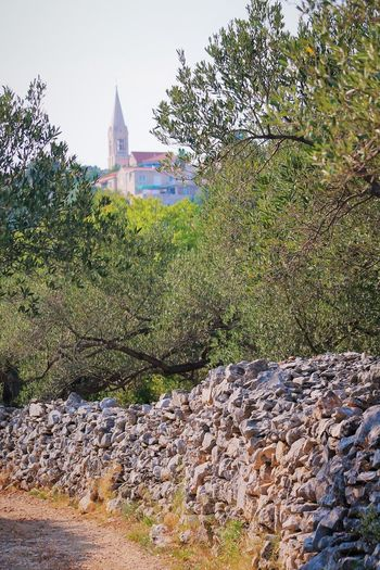 Architecture Beauty In Nature Brac Croatia Croatia Brac Croatia ♡ Croatiawithlove Green Color Nature No People Olive Tree Outdoors Religion Selca,Brac Tranquility Tree