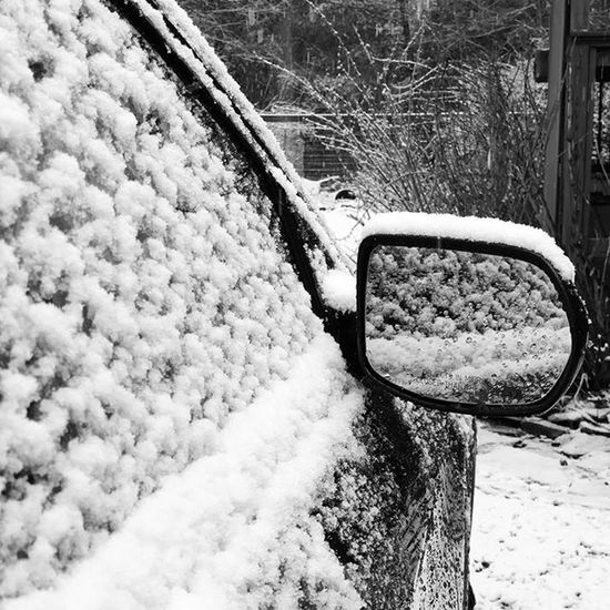 What a Surprise , Snow !!! Liveoutdoors Photowall Adventure Thephotosociety WeLiveToExplore Outofthephone Current_challenges Theellijays Gilmercounty Georgia Lifeintheclouds Inspiredbyadventure Wandernorthga Adventureheroes Instagram Optoutside Shutterbug_collective Universalviews The_home_front Everything_imaginable Photooftheday ProtectTheWild From_your_perspective carinsnow home bw_divine blackandwhite blackandwhitephotography