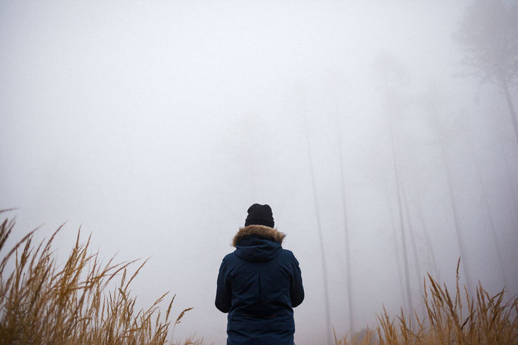 Rear view of woman standing at forest during foggy weather