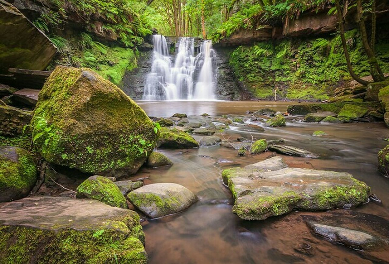 waterfall, flowing water, motion, water, scenics, long exposure, beauty in nature, rock - object, nature, green color, no people, outdoors, moss, day, tree, plant, forest, growth, freshness