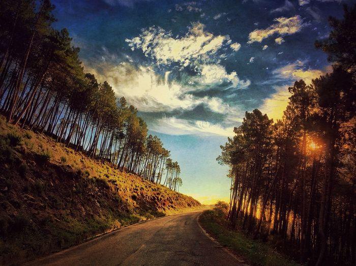AMPt_community IPhoneography NEM Submissions WeAreJuxt.com EyeEm Best Shots - Landscape