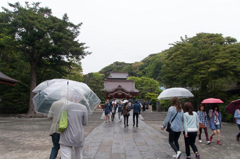 Tourists Visiting Tsurugaoka Hachimangu During Rainy Season