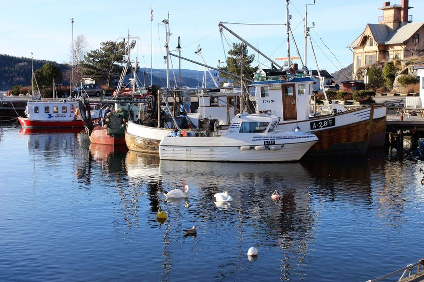 Drøbak Harbour Scenery_collection Travel Destinations Scenery Shots Blue Water Tranquility Oslofjord Norway Outdoors Sunlight Winter Clear Sky EyeEm Scenic Landscapes No People Moored Waterfront